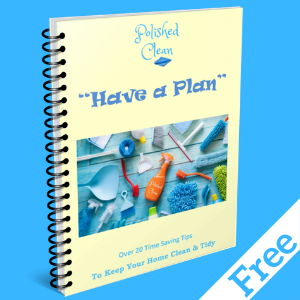 Free Cleaning Tips eBook